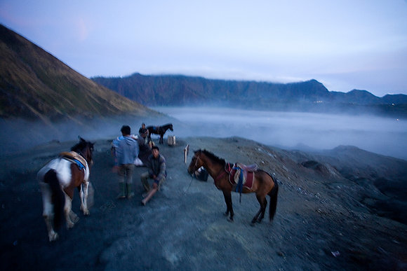 Donkey Porter, Mt Bromo Volcano
