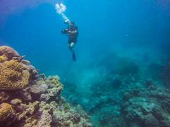 Capturing the underwater greatness