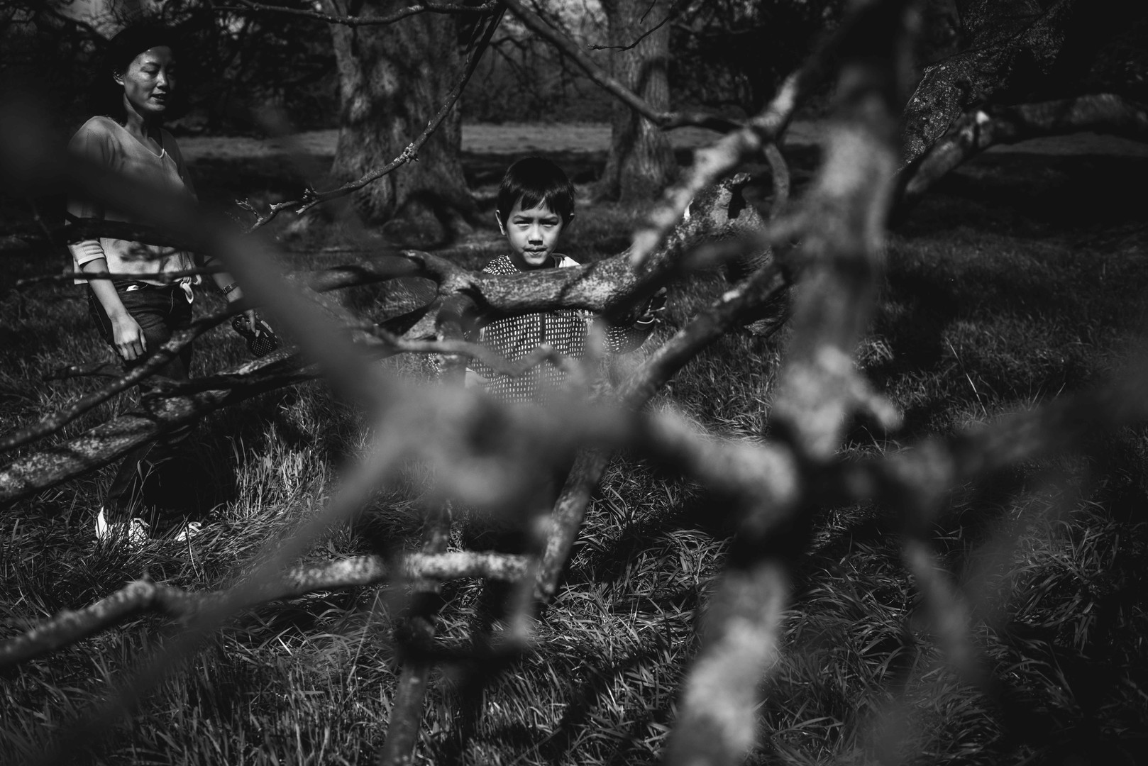 Boy looking through the trees