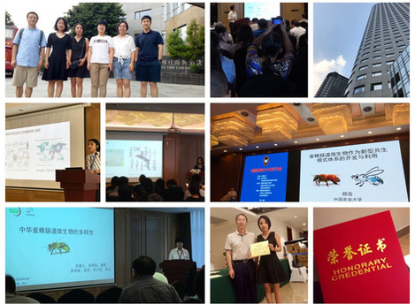 Team presented in 2018 Annual Meeting of the Entomological Society of China