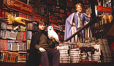 biblioteca-harry-potter-a-porto.010.jpeg