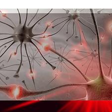 neuronio laser.png