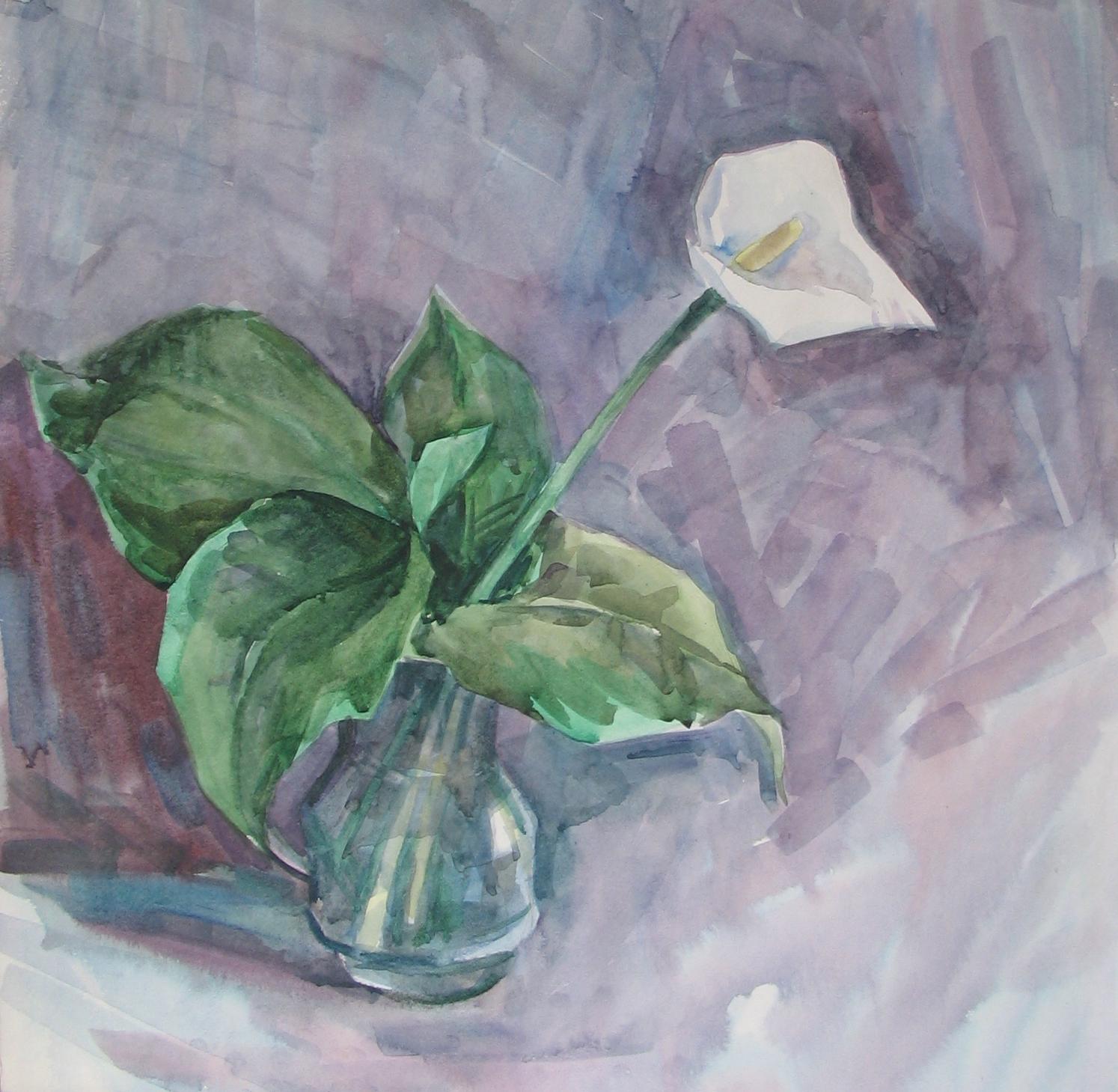 Белый цветок акв.б