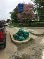 Ionic #31's Adopt-a-Highway Cleanup
