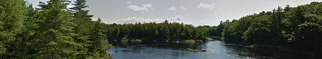 Maine field site