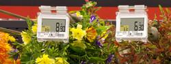 gardening_SES-imagotag_business_case
