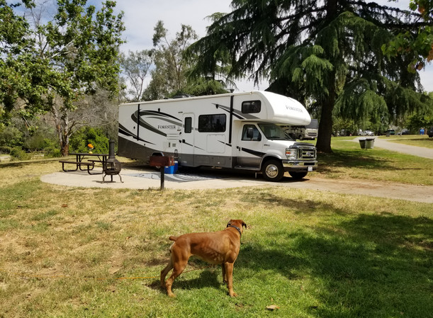 RV Rental Forest River Forester San Bernardino National Forest