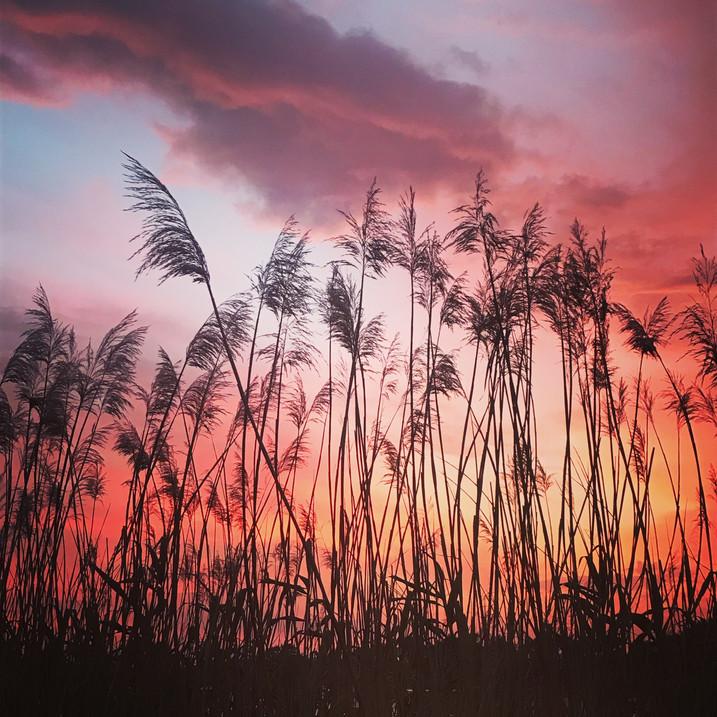 Summer and its dramatic skies at lake Lhota