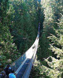 Vancouver- Hanging Bridge