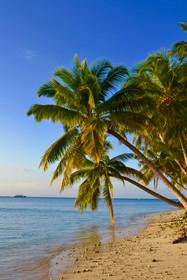 Croisière plongée maldives