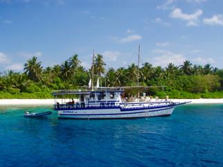 sun maldives plongée