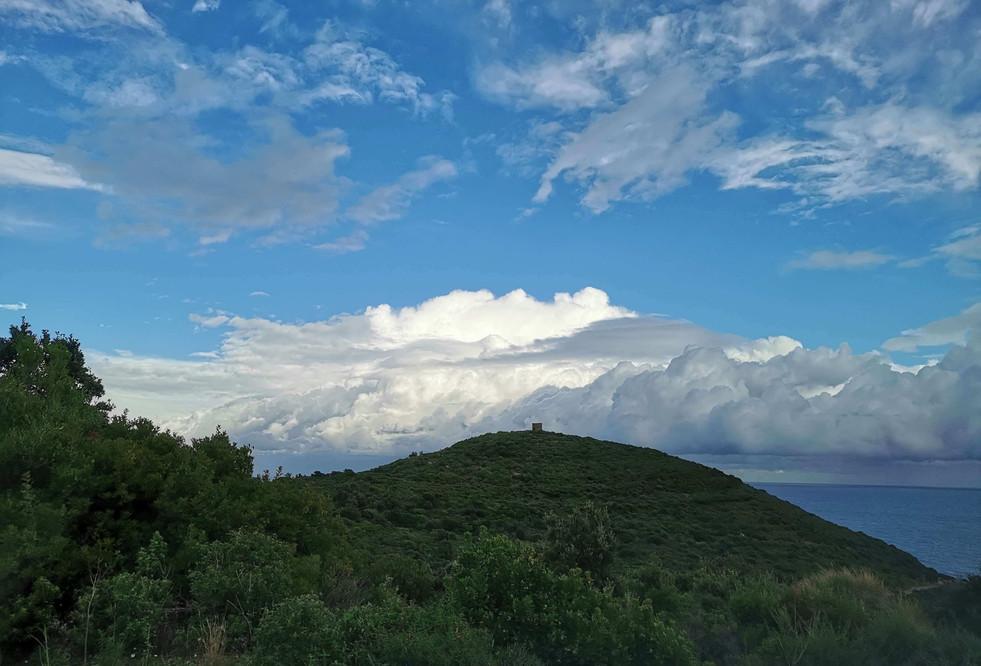 Colline du Bucinu et son moulin
