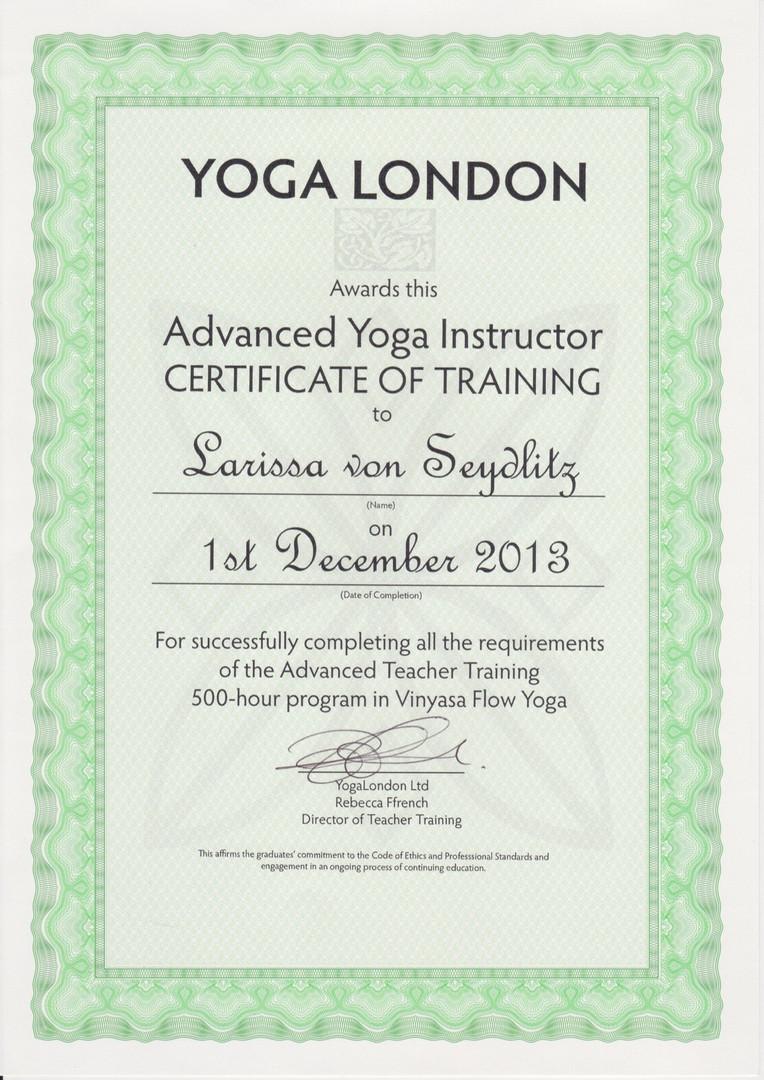 500Std Ausbildungsnachweis Vinyasa Flow Yoga.jpg