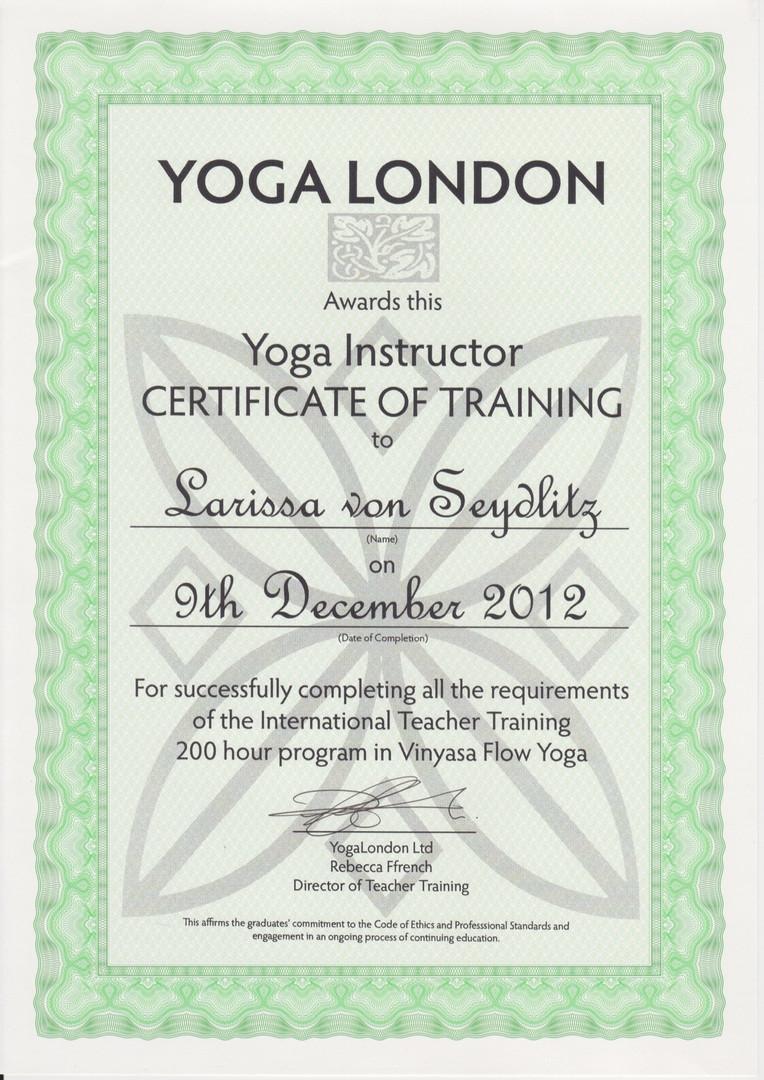 200Std Ausbildungsnachweis Vinyasa Flow Yoga.jpg