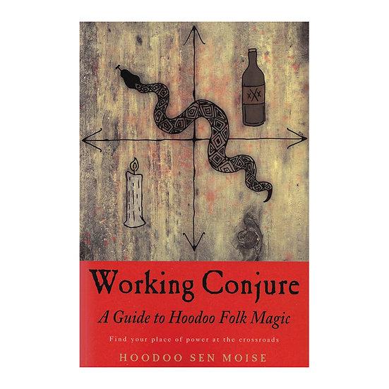 Working Conjure A Guide to Hoodoo Folk Magic