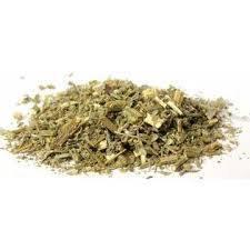Wormwood Cut (Artemisia absinthium)
