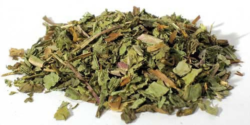 Dandelion Leaf Cut (Taraxacum officinale)