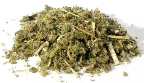 Horehound Cut (Marrubium vulgare)