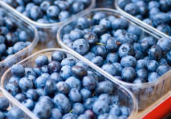 Biofuturo empresa colaboradora de Chilean Blueberry Committe