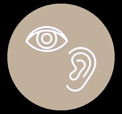 Hearing and Vision.png