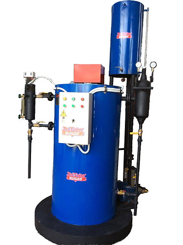 CGDO steam boiler