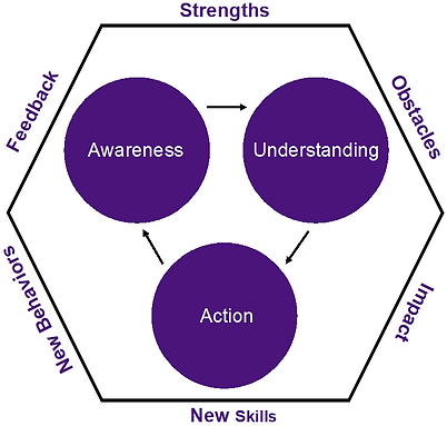 joanne-derr-coaching-diagram.png