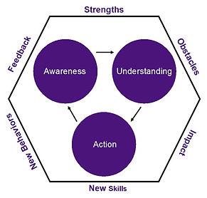joanne-derr-coaching-diagram.jpg