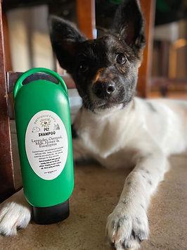 Iris with Pet Shampoo nansoap