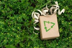 ¡Feliz y sustentable Navidad!