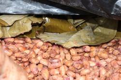 cacao|ecuatoriano|chile