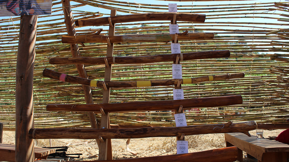 Didgeridoos em Agave