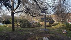 Old Tidemill Garden