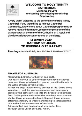 Newsletter 12 January
