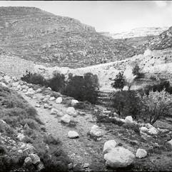 L'armée israélienne a déversé des pierres sur le chemin qui mène aux vergers d'Artas le rendant ainsi impraticable. à l'arrière, on voit le tracé du mur en construction et une colonie. (2009)