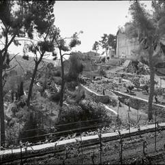 Le couvent des pères salésiens dans le val de Crémisan. Les vignobles sont traversés par le mur israélien, ce qui entrave gravement le travail des vignerons palestiniens.