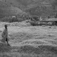 Murambi, le 8 avril 2004.  Le paysage est superbe. Les oiseaux chantent. Les enfants se promènent au bord des anciennes fosses communes.