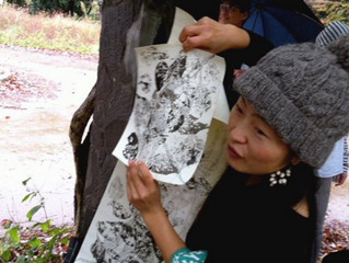 ◎自然観察会 in 服部緑地公園(大阪)ご報告 Nature Observation Meetings in Hattori Ryokuchi-Park in Osaka.