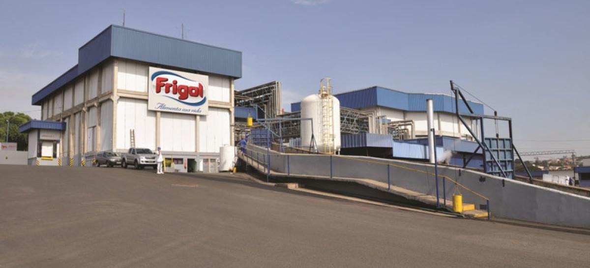 frigol-1200x545_c