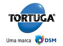 AF_DSM_TORTUGA_UMA_MARCA_DSM_PREFERENCIA