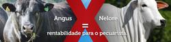 1483539720_fanpage_capa_cda_2