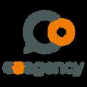 co-agency logo.png