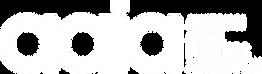 aaia_Logo_white.png