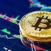 Economia: Tesla investe 1,5 miliardi in bitcoin (e la criptovaluta vola)