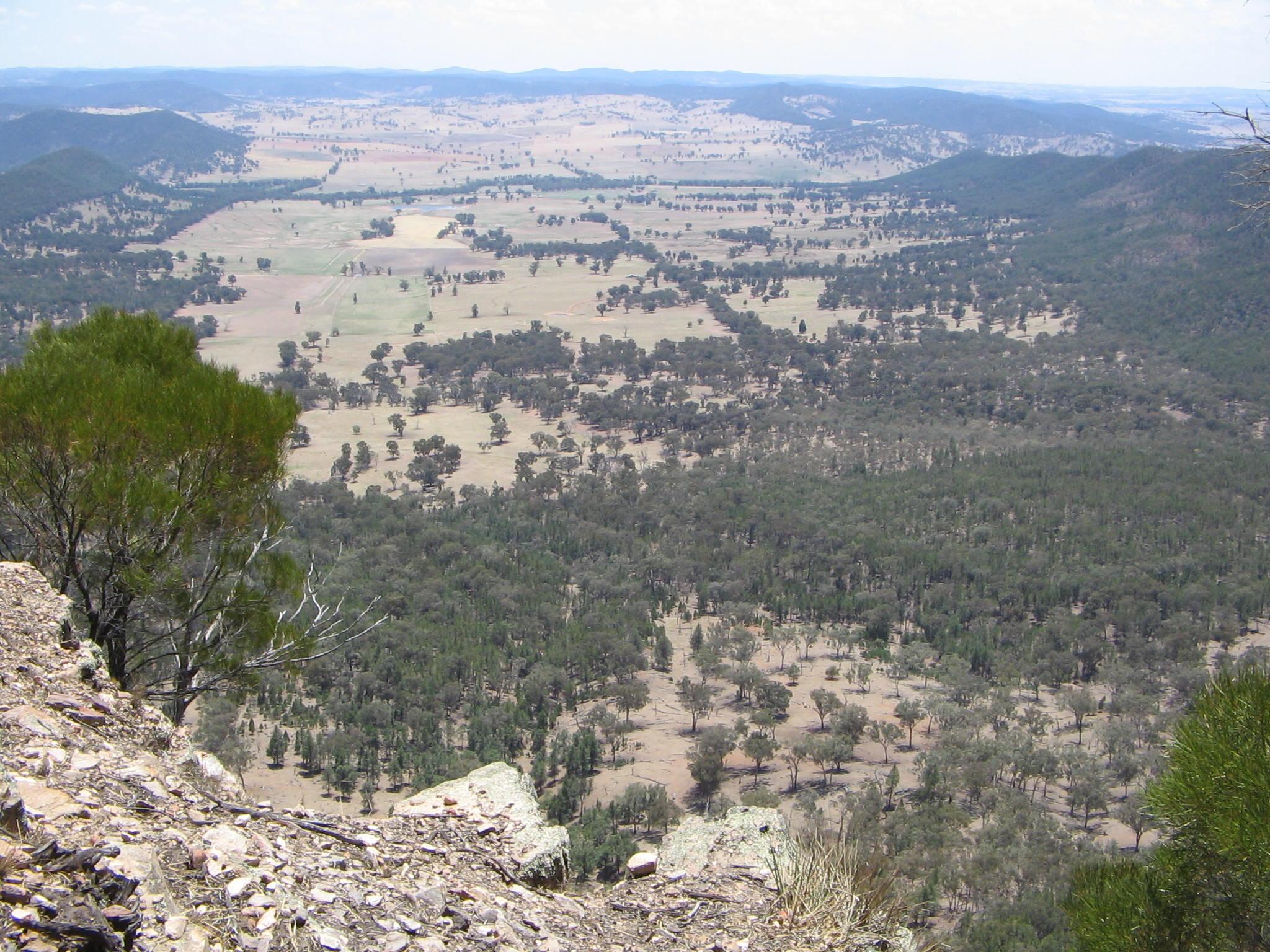Nangar NP, Eugowra NSW