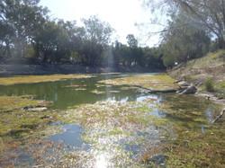 """Darling River, 'Baaka"""", Pooncarie"""