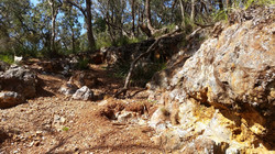 Praise Mine - Hanging Rock Nundle