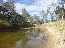 Wimmera River, Western Victoria