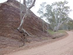 Flinders Ranges, Parachilna Gorge