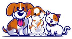 Pet Online Stores
