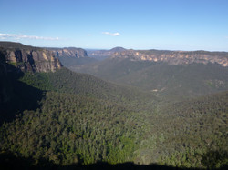 Grose Valley, from Blackheath